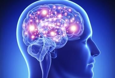 Las Inteligencias Múltiples como base de una nueva educación